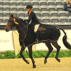 (Chronicle of the Horse) Lillie Keenan - Maclay Finals 2013 - Champion