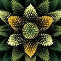 Fractal art--would make an amazing basis for a quilt! Other examples of fractal art can be found on the site, as well.