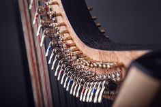 Instrument on Behance. Harp, Type 3, Behance, Facebook, Photos, Orchestra, Pictures