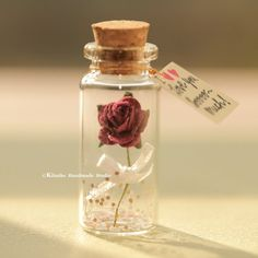 Attempting to locate entertaining corporate gifts to produce a patient or even the group? We've got the foremost distinct range. Bottle Jewelry, Bottle Charms, Bottle Necklace, Mini Glass Bottles, Small Bottles, Message In A Bottle, Mini Things, Messages, Diy Birthday
