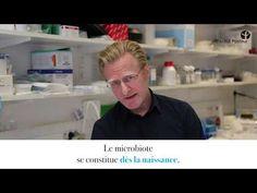 La Colonisation, Html, Biotechnology, Immune System