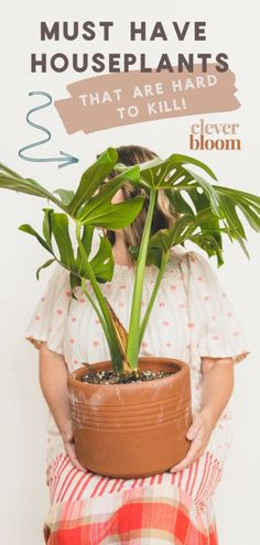 If you're looking for houseplants that are hard to kill, look no further! Check out these 9 must have houseplants by Clever Bloom. Easy House Plants, House Plants Decor, Plant Decor, Indoor Floor Plants, Best Indoor Plants, Perfect Plants, Cool Plants, Planting Succulents, Planting Flowers