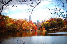 New-york-city-photo-fall-cc_large