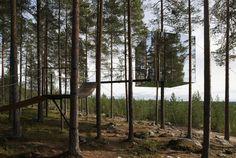 La habitación de un hotel entre los árboles: MirrorCube …