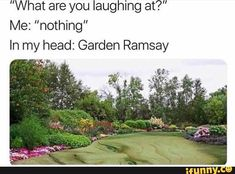 "memes — iFunny ""What are you laughing at?"" Me: ""nothing"" In my head: Garden Ramsay – popular memes on the site ""What are you laughing at?"" Me: ""nothing"" In my head: Garden Ramsay – popular memes on the site Stupid Funny Memes, Funny Relatable Memes, Haha Funny, Funny Cute, Hilarious, Funny Stuff, Funny Pix, Funniest Memes, Funny Humor"