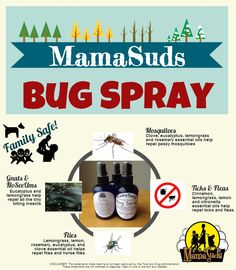 Diy Bug Spray An Uncomplicated Life Blog Essential