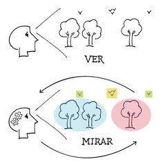 Ver y Mirar para acercarse al Pensamiento Visual | vissua.com