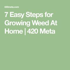 7 Easy Steps for Growing Weed At Home | 420 Meta