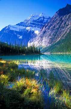 Morning at Cavell Lake and Mount Edith Cavell. Jasper National Park, Alberta, Canada | by jerry mercier, via Flickr