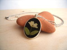 Real flower necklace  Wood anemone flower  by SnippetsOfNature
