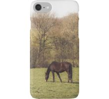 iPhone Case/Skin Iphone Cases, Horses, Artwork, Photography, Products, Work Of Art, Photograph, Photography Business, Horse