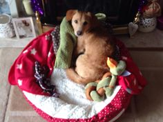 Keith more confident in his new bed from Santa
