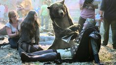 "Canal+ ""The Bear"" by BETC Paris"