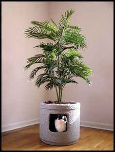 Litter Box Solutions - for downstairs or hallway