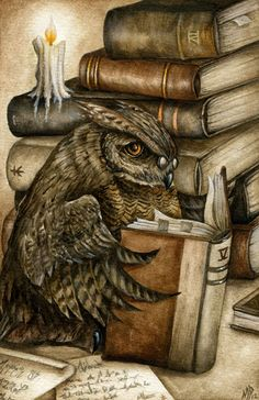 Owl Studies by ~Markelli on deviantART -  Books are a hoot