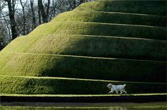 'Life Mounds' by landscape architect Charles Jencks, at Jupiter Artland in Scotland. You may remember his own Scottish garden, 'The Garden of Cosmic Speculation'. Garden Of Cosmic Speculation, Urban Nature, How To Be Likeable, Human Art, Parcs, Environmental Art, Landscape Architecture, Landscape Designs, Landscape Art