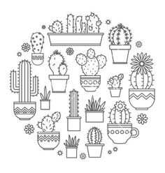 Linear design potted cactus elements. succulent vector - by Leyasw on VectorStock®