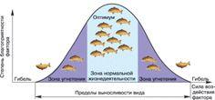 Биология в лицее: Общие законы зависимости организмов от факторов ср...