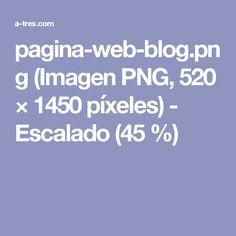 pagina-web-blog.png (Imagen PNG, 520 × 1450 píxeles) - Escalado (45 %)