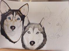Today's a work in progress dog watercolour portrait