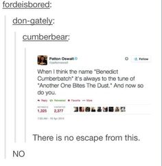 *tune if song* Benedict Cumberbatch. A British actor with a hedgehog friend, Benedict Cumberbatch Tumblr Stuff, My Tumblr, Tumblr Posts, Tumblr Funny, Benedict Cumberbatch, We Will Rock You, Fandoms, Johnlock, Rupert Graves