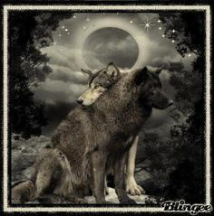 There's something about this that's just super calming and hypnotizing :) I love wolves