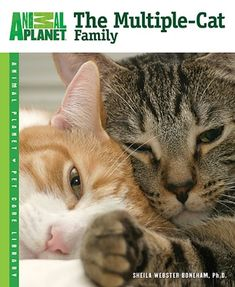 The Multiple-Cat Family (Animal Planet® Pet Care Library)...