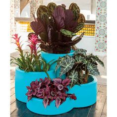 Design γλάστρα τεσσάρων θέσεων Planter Pots, Design