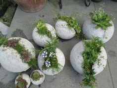 Dish Garden, Garden Art, Terrarium Wedding Favor, Outdoor Garden Lighting, Outdoor Decor, Headboard Lamp, Diy Concrete Planters, Hand Planters, Flower Planters