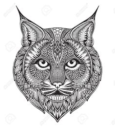Illustration of Hand drawn graphic ornate bobcat with ethnic floral doodle pattern.Vector illustration for coloring book, tattoo, print on t-shirt, bag. Isolated on a white background. vector art, clipart and stock vectors. Cat Coloring Page, Adult Coloring Pages, Coloring Books, Colouring, Mandala Art, Mandala Pattern, Cat Tattoo, Book Tattoo, Floral Doodle