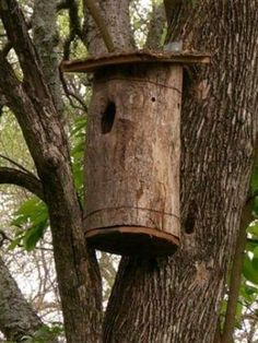 Owl Box...I want to put up an owl box to attract owl family to our yard....partly because I love owls and partly for gopher control!