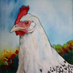 Betty Kloosterman - Chickens 4