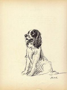 SPANIEL -1930s Vintage Dog Print,  Lucy Dawson, Wall Home Decor, Cocker Spaniel, Art Illustration to Frame, plate, black & white