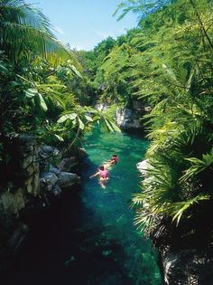 Beautiful rivers in Xel Ha ecological park in the Riviera Maya