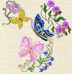 colourline butterflies