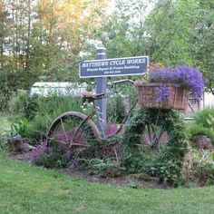 Vintage bicycle repurposed as a planter. Lovely.