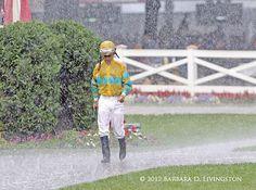 Javier Castellano, Saratoga rain.