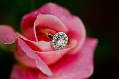 Kylie Williams Photography Brisbane to Gold Coast, newborn and family photographer Engagement Ring Photos, Engagement Session, Newborn Photographer, Family Photographer, Photographic Studio, Fine Art Photography, Druzy Ring, Heart Ring, Bling