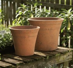 Terracotta Hot House Flower Pots by Guy Wolff Terracotta Plant Pots, Ceramic Flower Pots, Hot House, Pot Sets, Garden Accessories, Clay Pots, Succulents Garden, Porch Decorating, Decorating Ideas