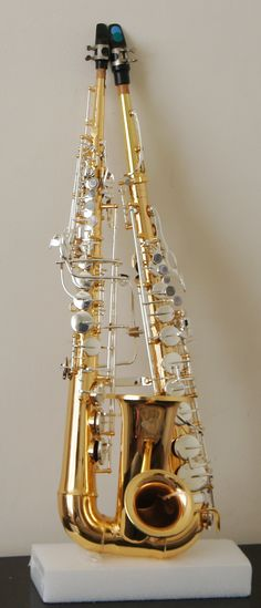 Sopralto Braithophone -  an instrument combining soprano and alto sax into one horn, invented by musician George Braith.