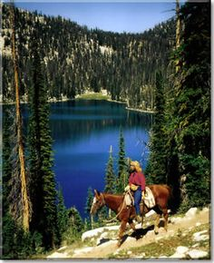 Trail riding...The best feeling is to be out in the open on horse back hitting the trails. #WhyILoveMe @Lisa Troxell Helmets