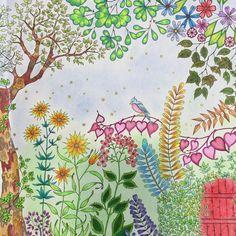 #jardinsecret #jardinsecreto #vicio#artecomoterapia#johannabasford