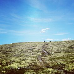 Rondane Nationalpark   Norway