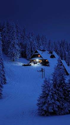 House, night, winter, trees, snow layer, nature, 720x1280 wallpaper