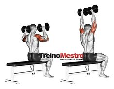 A shoulder workout to build lean muscle and create width in the shoulders. These are the 5 best shoulder exercises to pack on lean muscle. Push Day Workout, Dumbbell Ab Workout, Workout Pics, Gym Workout Tips, Workout Videos, Body Workouts, Yoga Videos, Workout Fitness, Best Shoulder Workout