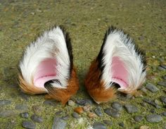 Small Fox Red Brown White Black Long Fur Leather Ears by noxhyde, $75.00