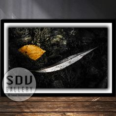 Downloadable Abstract, Digital Photo, Printable Wall Art, Dream, Leaf, River, Sunlight, Water, Spring, Forest, Reflection, Vienna, Austria Spring Forest, Leaf Photography, Vienna Austria, Photo Tree, Landscape Photos, Nature Photos, Printable Wall Art, Sunlight, Reflection