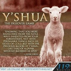 Jesus the Passover Lamb – Understanding Passover for Christian Families Scripture Verses, Bible Verses Quotes, Bible Scriptures, 119 Ministries, La Sainte Bible, Encouragement, Christian Families, Christian Life, Christian Women