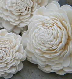 fake blooms.. these are made out of balsa wood.. love love love