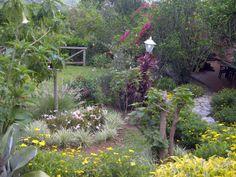 Ideas de mi Jardin
